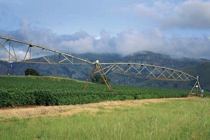 Impianti irrigui impatti ambientali a confronto for Manichette per irrigazione prezzi