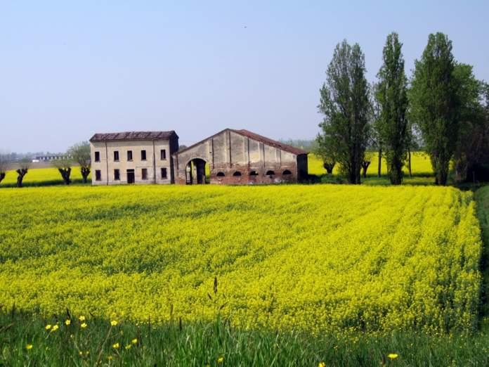 Fabbricato rurale