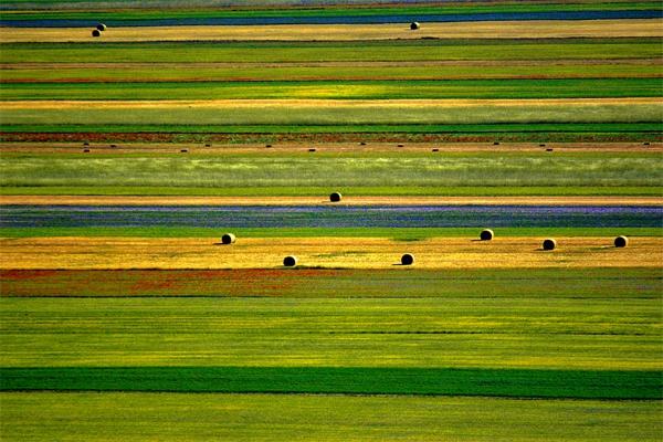 paesaggioColorato_Tintori.jpg