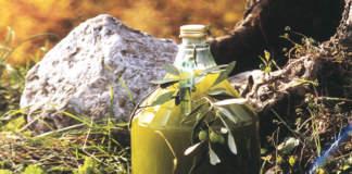 contraffazione olio di oliva