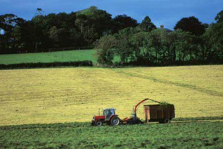 La società agricola è agricoltore attivo