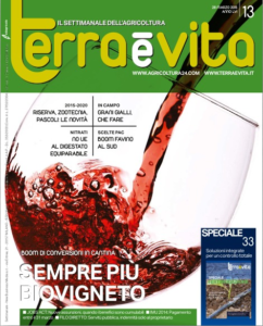 TV 13_2015 COPERTINA