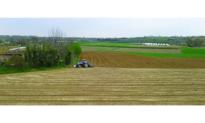 greening agricoli