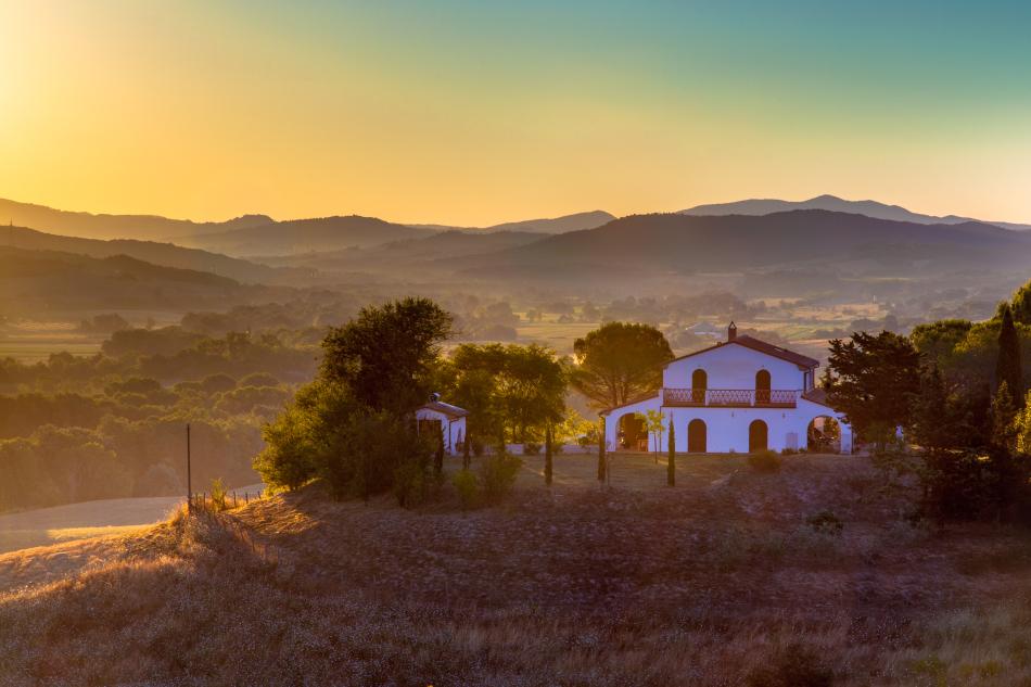 www.terraevita.itn Tuscany, Italy