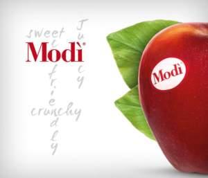 Modi_taste