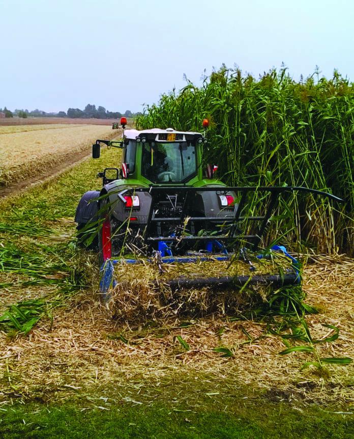 biomasse agricole