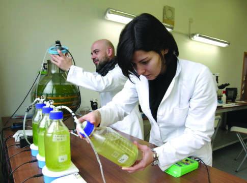 biotecnologica