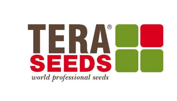 tera seeds