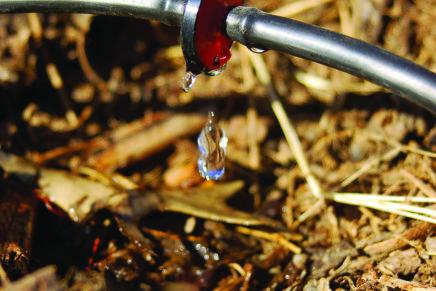 Schede microcontroller e irrigazione fai da te