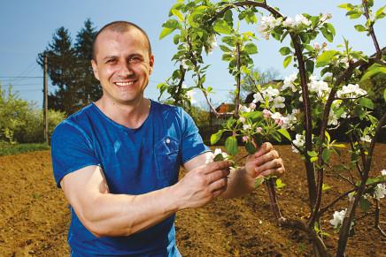 Lavoro, l'agricoltura è il settore dove cresce di più