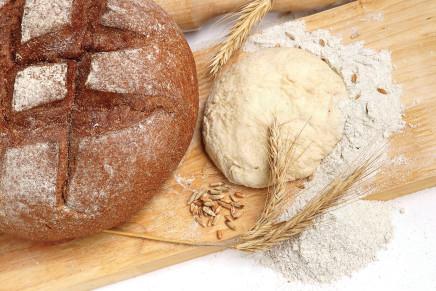 l glutine è una ricchezza, va valorizzato non eliminato