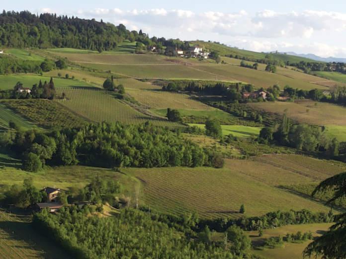 agronomi