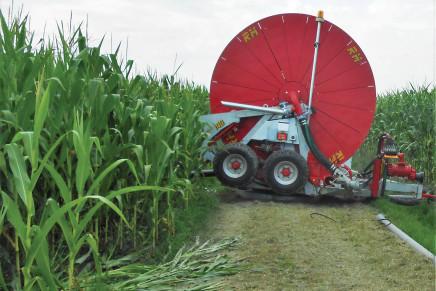 Una pratica irrigua ad hoc per il trinciato da biogas