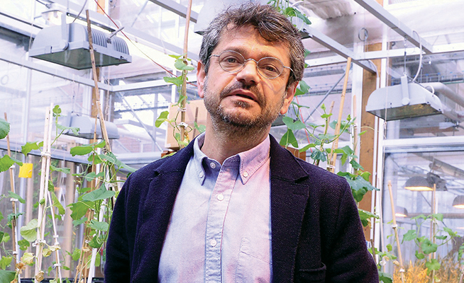 Prof. Andrea Segrè