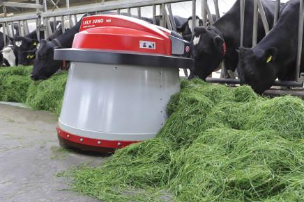 Foraggicoltura sostenibile tra ambiente e qualità del latte