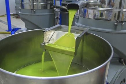 A Spoleto convegno sull'innovazione nella filiera olivicola