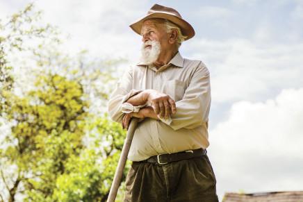 Le pensioni troppo basse azzerano il turnover nei campi