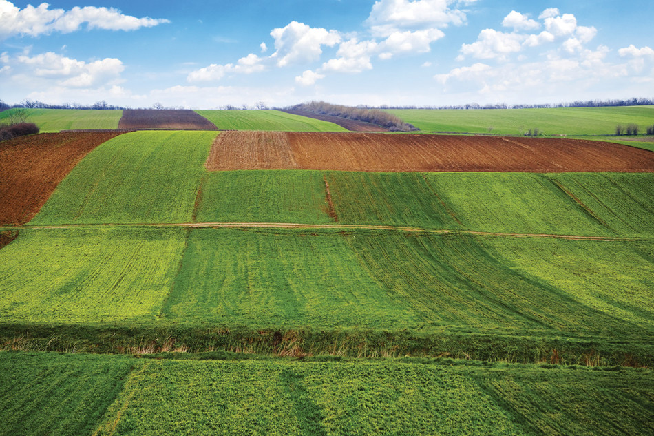 Agricultural field. Arable land in the spring, ready for the sowing season.