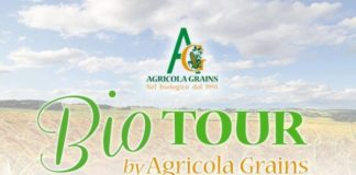 agricola grains