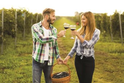 Più attenzione al vino biologico