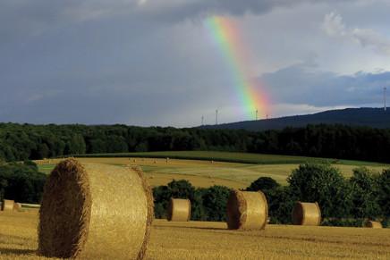 Il Pil cala solo in agricoltura, la deflazione è devastante