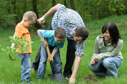 Servizi per l'infanzia, la scelta della struttura