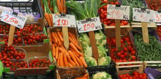 Clima e fitopatie, nuove formule anti-rischi