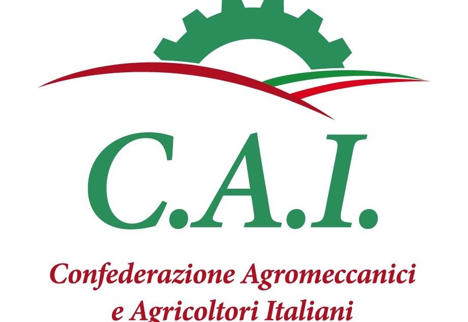 logo_CAI 2 righe