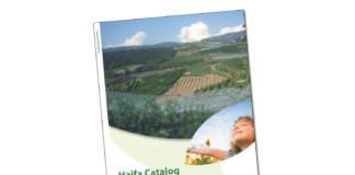 haifa italia