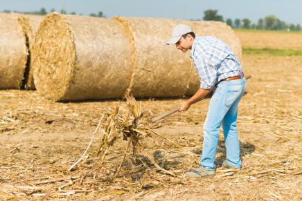 Coadiuvante agricolo, niente esenzione Imu