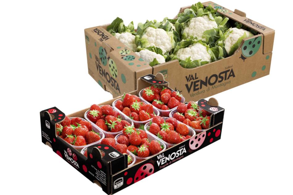 VI.P fragole e verdura