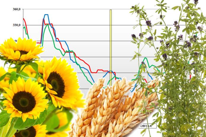 prezzi dei cereali mondiali terra e vita
