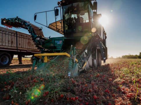 macchina per la raccolta del pomodoro di mts