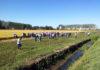 riso giornata in campo organizzata da sis