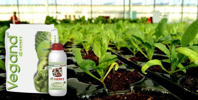 sostanza organica fertilizzante fomet