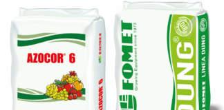 fertilizzanti per cereali biologici