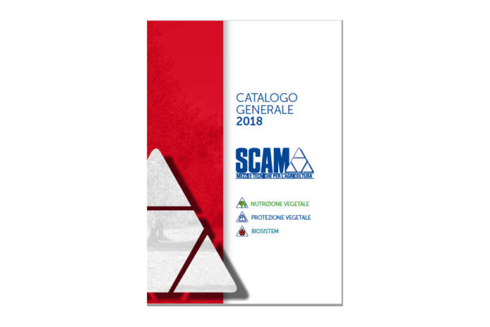 scam catalogo 2018