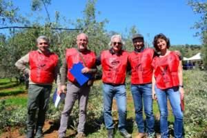 nova agricoltura in oliveto forbici d'oro