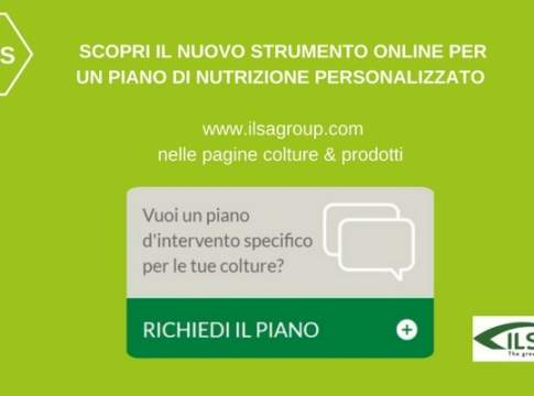 piano di intervento personalizzato online ilsa