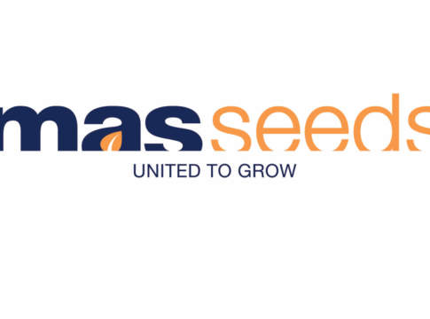 nuovo marchio mas seeds