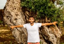 save the olives contro la xylella