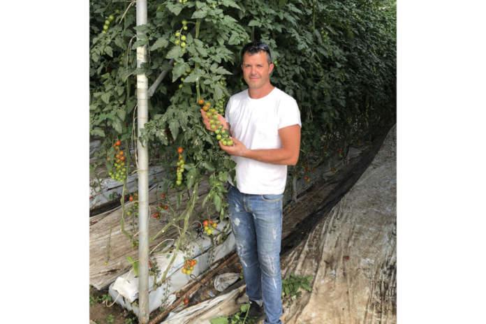 pomodori della green valley paolo lo monaco