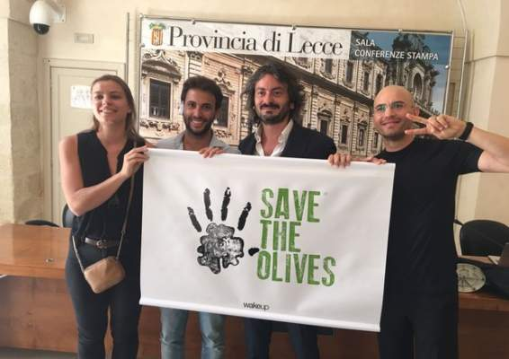 save the olives contro la xylella