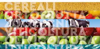 La filiera agroalimentare al centro della nuova strategia per il Made in Italy