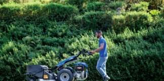 attrezzature per il verde bcs