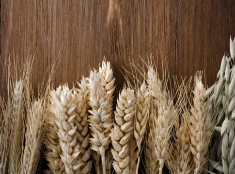 prezzi dei cereali 1 ottobre 2018