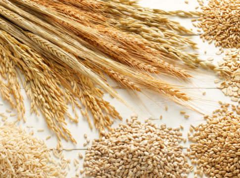 prezzi dei cereali 8 - 13 ottobre 2018