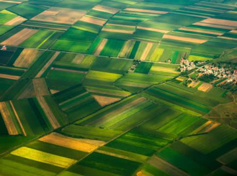 reddito agricolo