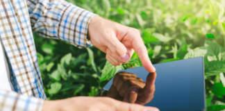 sostenibilità in agricoltura