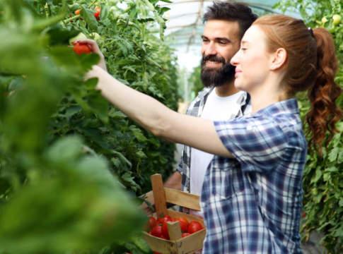 giovani agricoltori italiani